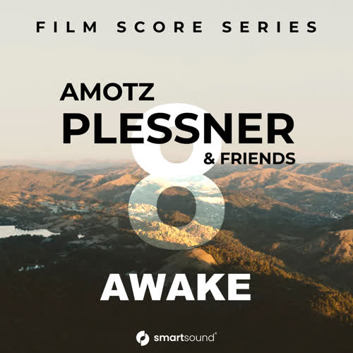 Amotz Plessner & Friends Vol 8 - Awake